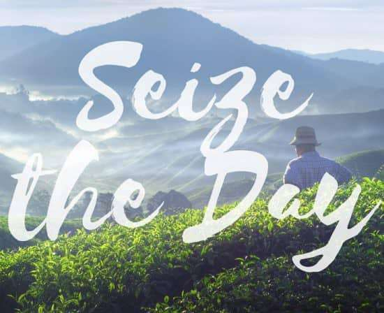 seize-the-day-frankl