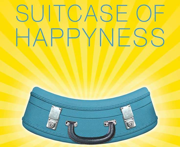siutcase-of-happyness-excerpt