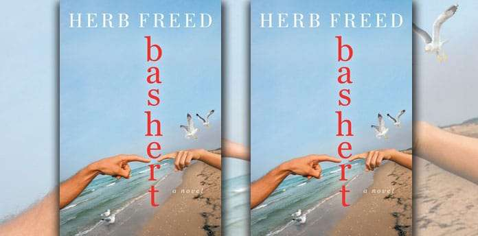 bashert-herb-freed-life-questions